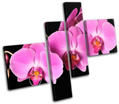 Orchids Flowers Floral - 13-1072(00B)-MP02-LO